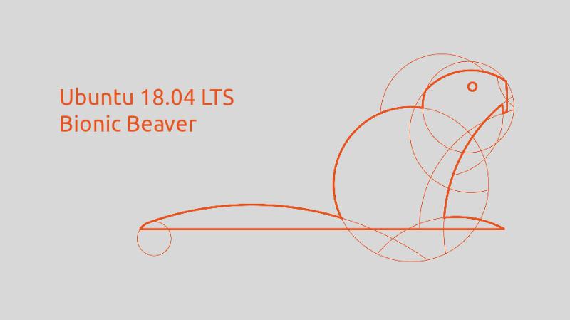 Ubuntu 18.04 Dual Boot Installation along Windows 10 for Deep Learning